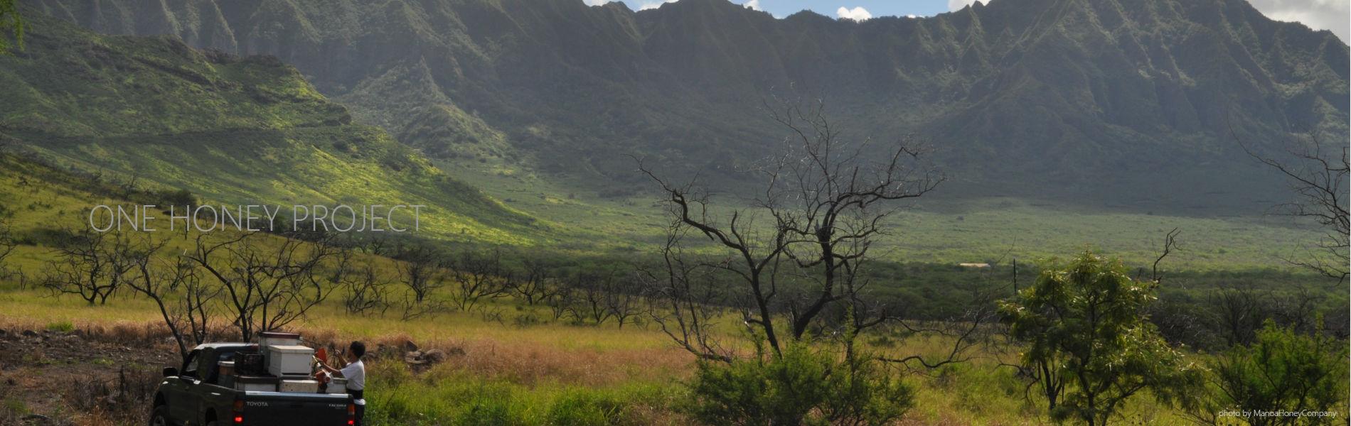 ハワイオアフ島採蜜地 株式会社ワンハニープロジェクト Hawaii ハワイ Oau オアフ Honey はちみつ